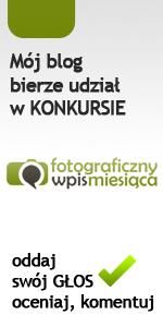 Mój blog bierze udział w konkursie Fotoblog - konkurs na wpis miesiąca
