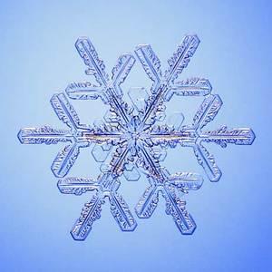 Zobaczcie najlepszą (według specjalistów) galerię zdjęć płatków śniegu