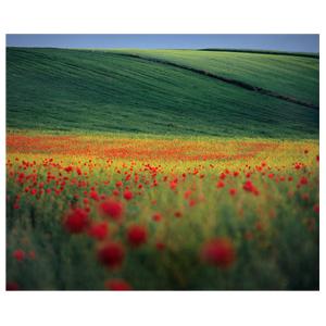 """Bartosz Dybowski: """"Uprawiam fotografię krajobrazową"""""""