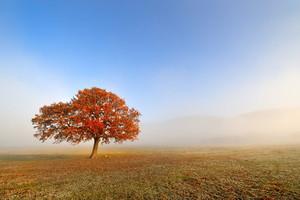 Konkurs National Geographic: Jesień w obiektywie