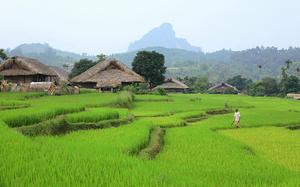 Fotoekspedycja Wietnam - ostatni miesiąc zapisów