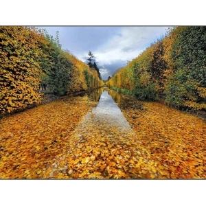 Jesień w obiektywie - wyniki konkursu National Geographic