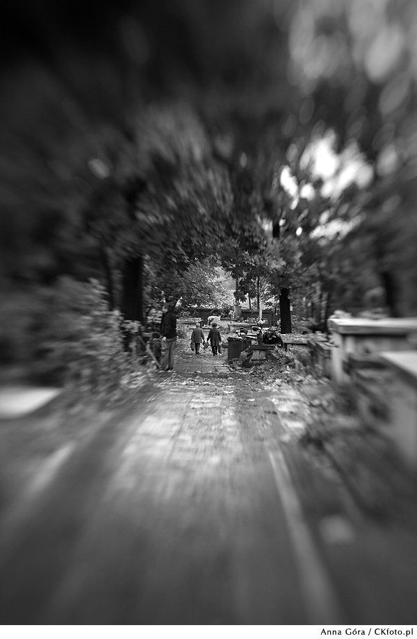 Lensbaby Composer, double glass, f 2.8.