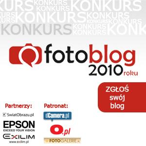 Nagroda Grand Prix w konkursie Fotoblog 2010 roku