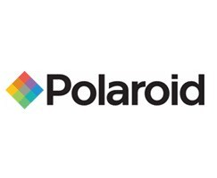 Polaroid sprzedał zdjęcia Adamsa, Warhola i innych za 12,5 mln dolarów