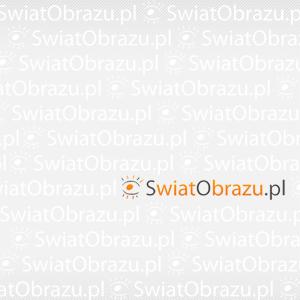 Polska przez pryzmat Nikona: Pojezierza