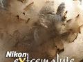 Nikon eXtremalnie VI: Cisza, spokój, sól, pył i aparat, czyli fotografowanie w kopalni
