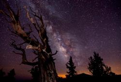 Astronomy Photographer of the Year 2010 - świetne zdjęcia zwycięzców konkursu