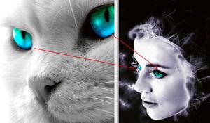 Adobe Photoshop - narzędzia selekcji, cz. III