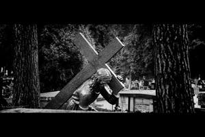 Wystawa fotografii w czasie kwesty w Kielcach