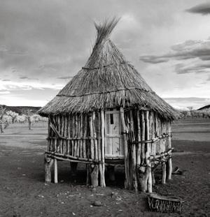 Fotografowanie konkretnych obiektów: architektura, pejzaże, ludzie, ptaki, zwierzęta... - praktyczny poradnik