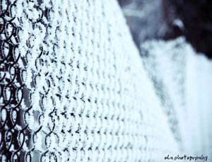 Konkurs Fotograficzny Wpis Miesiąca - wybór dnia - Zimowe