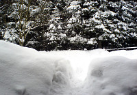 Zima 2010 - nowy konkurs fotograficzny firmy Olympus