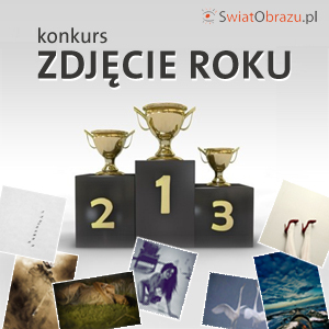 Zdjęcie Roku - konkurs