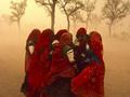 Wystawy fotografii na świecie: Roger Ballen, Steve McCurry, współczesna fotografia gruzińska