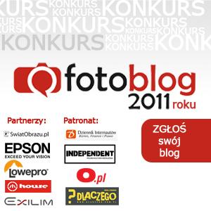 Nie przegap - ostatnie dni głosowania na zwycięzcę miesięcznej edycji konkursu Fotoblog Roku 2011