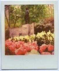 Nowy film dla Polaroidów