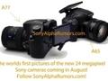 Pierwsze zdjęcia Sony SLT-A77?