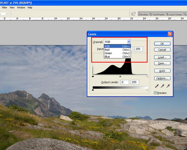Adobe Photoshop korekta poziomów wyrównywanie poziomów