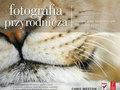 """Nowa książka wydawnictwa Helion - """"Fotografia przyrodnicza. Techniki pracy najsłynniejszych fotografów natury"""""""