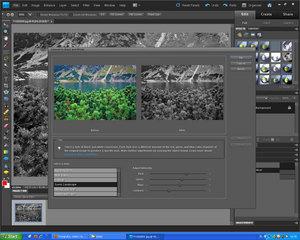 Adobe Photoshop Elements 9: Jak przerobić zdjęcie na czarno-białe