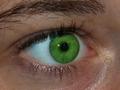 Adobe Photoshop Elements 9: Retusz oczu