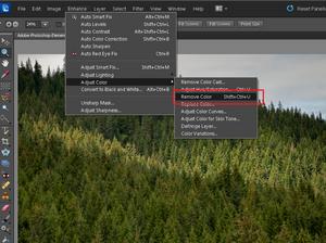 Adobe Photoshop Elements 10: Sepia i tonowanie zdjęcia