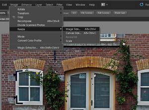 Adobe Photoshop Elements 10: Przygotowanie zdjęcia do publikacji w Internecie