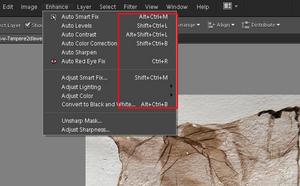 Adobe Photoshop Elements 10: Lista przydatnych skrótów