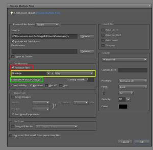 Adobe Photoshop Elements 10: Grupowa obróbka zdjęć