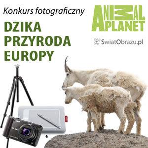 Dzika przyroda Europy – konkurs fotograficzny