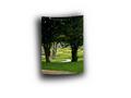 Adobe Photoshop Elements 10: Efekt wygiętego zdjęcia