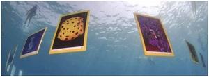 Lateksowe rewolucje, czyli o foto-wystawie na dnie Morza Czerwonego