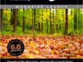 Pierwszy numer darmowego GIMP Magazine już 5 września