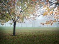 10 punktów: jak fotografować jesień?