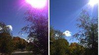 Apple tłumaczy jak zniwelować fioletową flarę na zdjęciach z iPhone 5