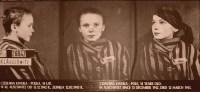 Zmarł Wilhelm Brasse, autor 50 tys. zdjęć z Auschwitz