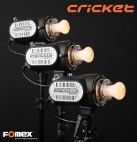 Lampy studyjne Fomex Cricket w trzech wersjach