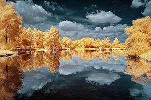 Mistrzowskie ujęcia krajobrazu w podczerwieni