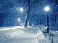 Jak fotografować padający śnieg?