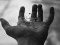 """Jak powstało to zdjęcie: Bennett Whitnell """"Catching Drops 54/365"""""""
