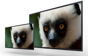 Sony pokazuje prototypy profesjonalnych monitorów OLED 4K