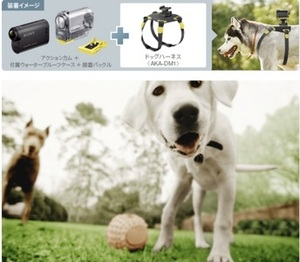 Sony AKA-DM1, czyli mocowanie do kamery dla psów