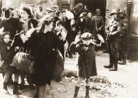 Tsvi Nussbaum - chłopiec na zdjęciu z likwidacji warszawskiego getta