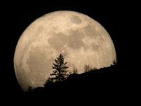 SuperMoon: większy i jaśniejszy Księżyc - fotografie z całego świata