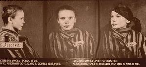 Fotograf z Auschwitz - premiera albumu