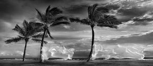 Hasselblad Masters Awards 2014 - galeria zwycięskich fotografii