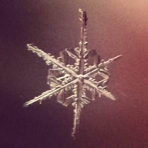 Płatki śniegu sfotografowane iPhone'em