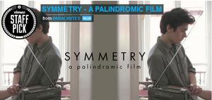 Film palindrom