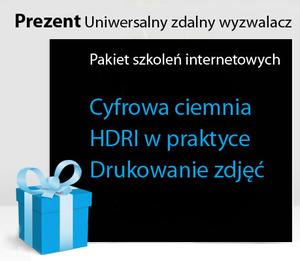 Pakiet szkoleń internetowych z uniwersalnym zdalnym wyzwalaczem w prezencie
